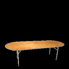 Tisch oval 100 x 300 cm