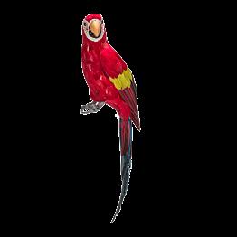 Papagei H 65 cm