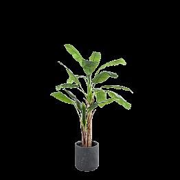 Künstlicher Bananenbaum H 180 cm mit Topf
